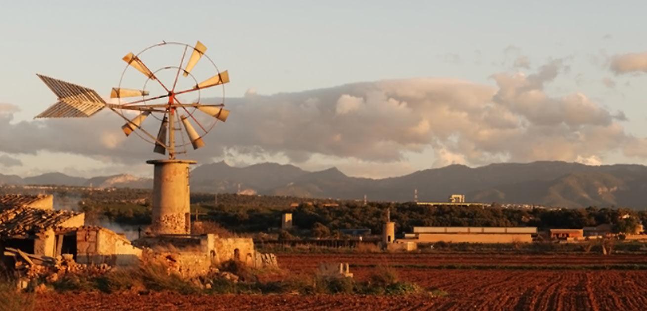 Ansicht Landschaft Mallorca